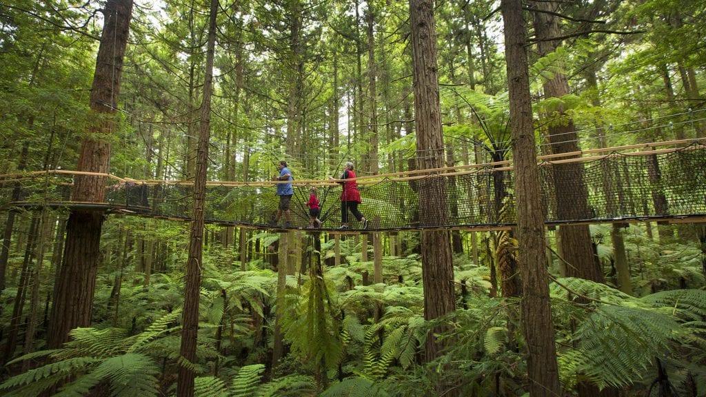 Rotorua Itineraries