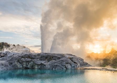 Te Puia geothermal hot pools.